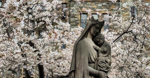 Statue of Blessed Virgin Mary and Christ Child with cherry blossoms